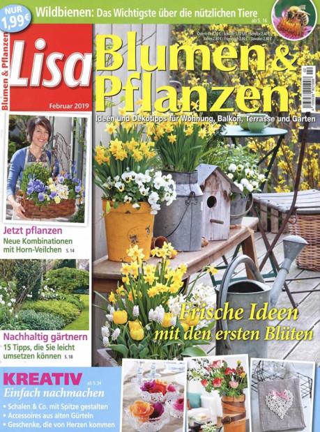 Lisa Blumen & Pflanzen im Abo - aktuelles Zeitschriftencover